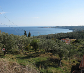Read more about the article Vounaria 2 plots